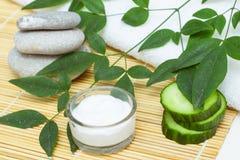 Natürliche Hautpflegeprodukte Ansichtbestandteile auf Tabellenkonzept vom besten alle natürliche Feuchtigkeitscreme Badekurortste stockfotos