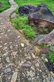 Natürliche heiße Frühlinge Stockbild