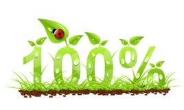 natürliche Ikone von 100 Prozent Lizenzfreies Stockfoto