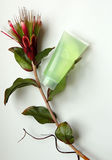 Natürliche Kosmetik und Blume Lizenzfreie Stockbilder