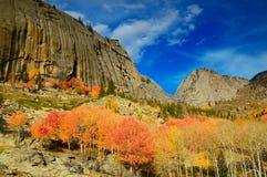 Natürliche Landschaft Stockfotos