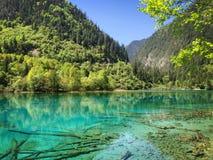 Natürliche Landschaft stockfoto