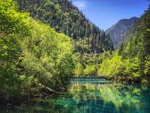 Natürliche Landschaft lizenzfreie stockfotos
