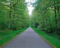 Natürliche Landschaft Lizenzfreie Stockbilder