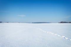 Natürliche Landschaft des Winters umfaßt mit Schnee Stockbilder