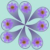 Natürliche Mandala von getrockneten gepressten Blumen, von Blumenblättern und von Blättern Stockfotos