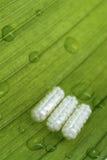 Natürliche Medizin Stockfotos
