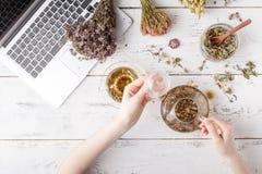 Natürliche Medizin Kräuter, medizinische Flaschen und altes Rezept buchen mit Kopienraum für Ihren Text stockfotos