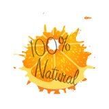 Natürliche 100-Prozent-Fruchtorange des Logos Stockbilder