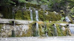Natürliche Quelle des Mineralwassers im Wald gemacht in den Wasserfällen stock video footage
