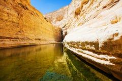 Natürliche Quelle des Wassers lizenzfreie stockfotos
