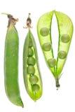 Natürliche reife grüne Erbsen Lizenzfreies Stockfoto