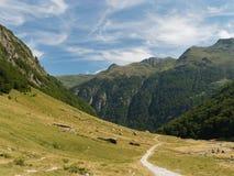 Natürliche Reserve Orlu, Pyrenäen, Frankreich Lizenzfreie Stockfotografie