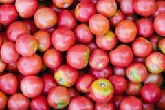 Natürliche rote Tomaten Die Ansicht von der Oberseite Beschaffenheit Hintergrund lizenzfreies stockbild