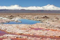 Natürliche Salzablagerung Stockbild