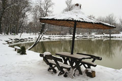 Natürliche Schönheit des Winters Lizenzfreies Stockfoto