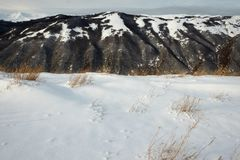 Natürliche schneebedeckte Landschaft in Abruzzo, Italien Stockbilder