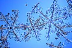 Natürliche Schneeflocke Lizenzfreies Stockfoto