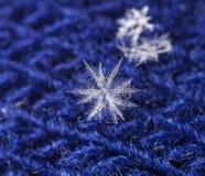 Natürliche Schneeflocken auf Pelz Lizenzfreie Stockfotos