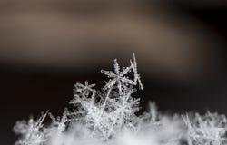 Natürliche Schneeflocken auf Schnee Stockfotos