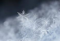 Natürliche Schneeflocken auf Schnee Stockbilder