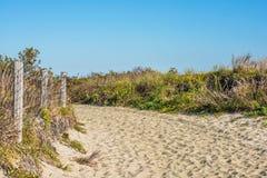 Natürliche Spur Sandy Hook Lizenzfreies Stockbild
