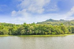 Natürliche Studie Jedkod Pongkonsao und Umwelttourismusmitte lizenzfreies stockbild