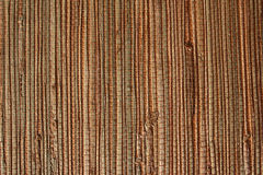 Natürliche Tapete von einem Gras Stockfoto