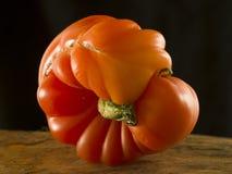 Natürliche Tomate Lizenzfreie Stockfotografie
