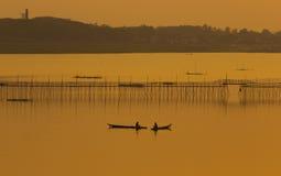 Natürliche Ufergegend in Thailand Stockbilder