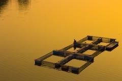 Natürliche Ufergegend in Thailand Lizenzfreie Stockfotografie