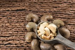 Natürliche und gebratene Acajounuss - Anacardium occidentale Lizenzfreies Stockfoto