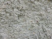 Natürliche Wandbeschaffenheitsfotos für Entwurf und Hintergrund stockbilder
