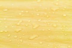 Natürliche Wassertropfen stockfoto