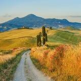 Natürliche weiße rustikale Straße in Toskana, Italien Lizenzfreies Stockbild