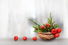 Natürliche Weihnachtsdekoration: Anordnung im Nussoberteil Lizenzfreie Stockfotografie