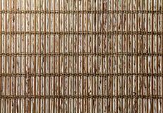 Natürliche Zweig-Hintergrund-Beschaffenheit Stockfotos