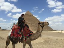 Natürlicher ägyptischer Mann Lizenzfreies Stockfoto