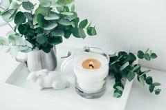 Natürlicher Öko-Haus-Dekor mit Grünblättern und brennender Kerze auf t stockfoto