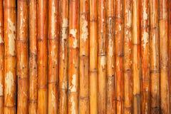 Natürlicher Bambushintergrund Lizenzfreies Stockfoto