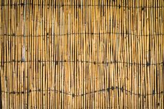Natürlicher Bambuszaun stockbild