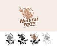 Natürlicher Bauernhof der Kuh Lizenzfreie Stockfotografie