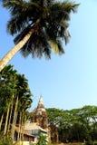 Natürlicher Baum und skye Lizenzfreies Stockfoto