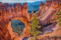 Natürlicher Bogen, Bryce Canyon National Park Stockfotos