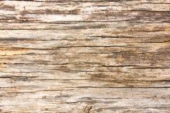 Natürlicher brauner hölzerner Hintergrund Lizenzfreie Stockbilder