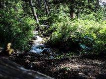 Natürlicher Fluss in den mountins von Montana lizenzfreie stockfotos
