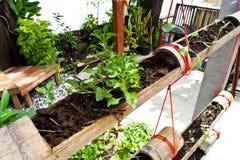 Natürlicher Garten Stockbild