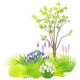 Natürlicher Garten Stockfoto