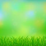 Natürlicher grüner Hintergrund stock abbildung
