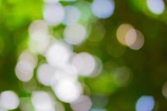 Natürlicher grüner Hintergrund mit bokeh Stockfotos